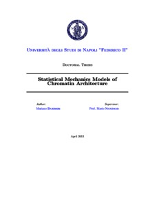 statistical mechanics for beginners pdf